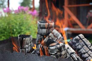 Какие дрова лучше выбрать для шашлыка?